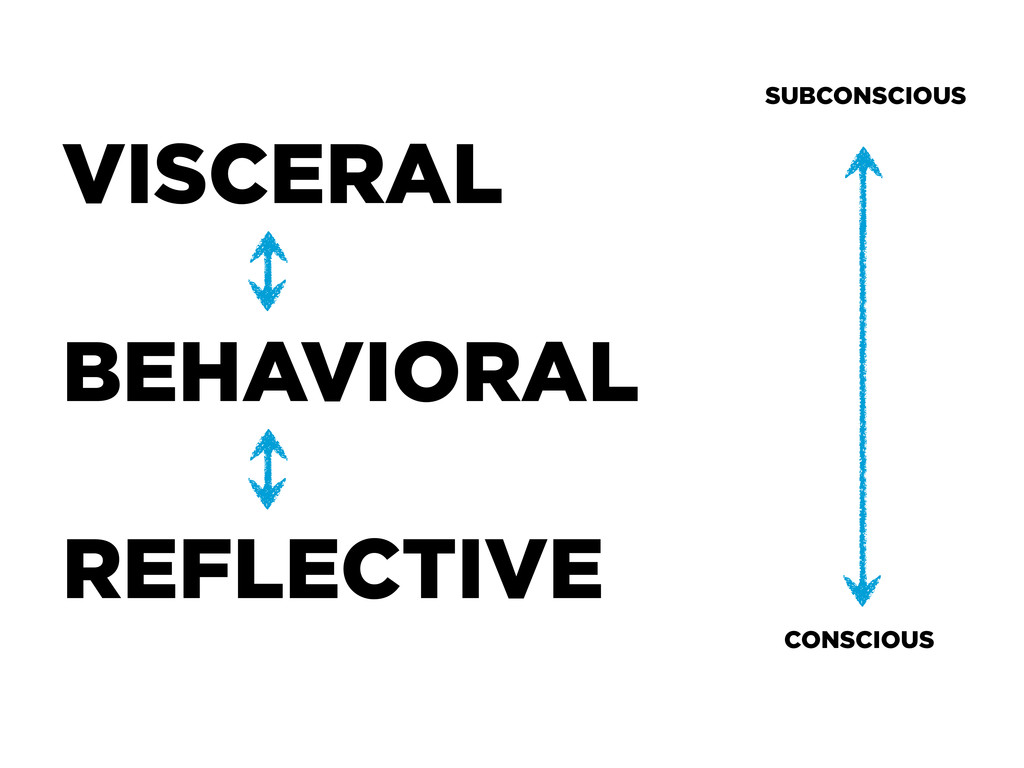 VISCERAL BEHAVIORAL REFLECTIVE SUBCONSCIOUS CON...
