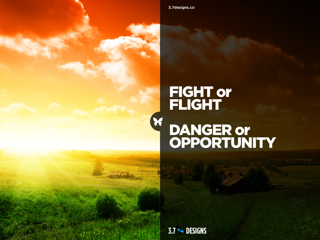 FIGHT or FLIGHT DANGER or OPPORTUNITY