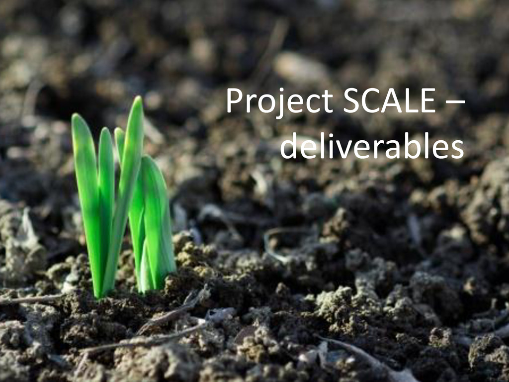 Project SCALE – deliverables