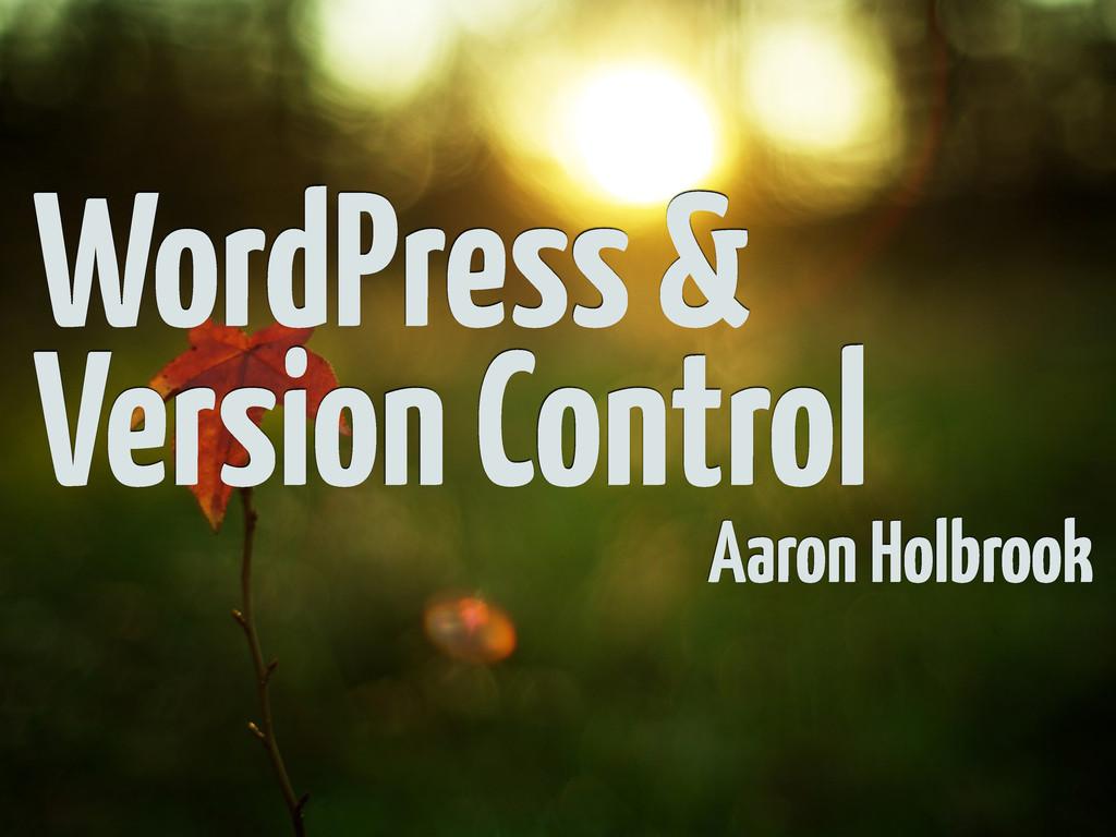 WordPress & Version Control Aaron Holbrook