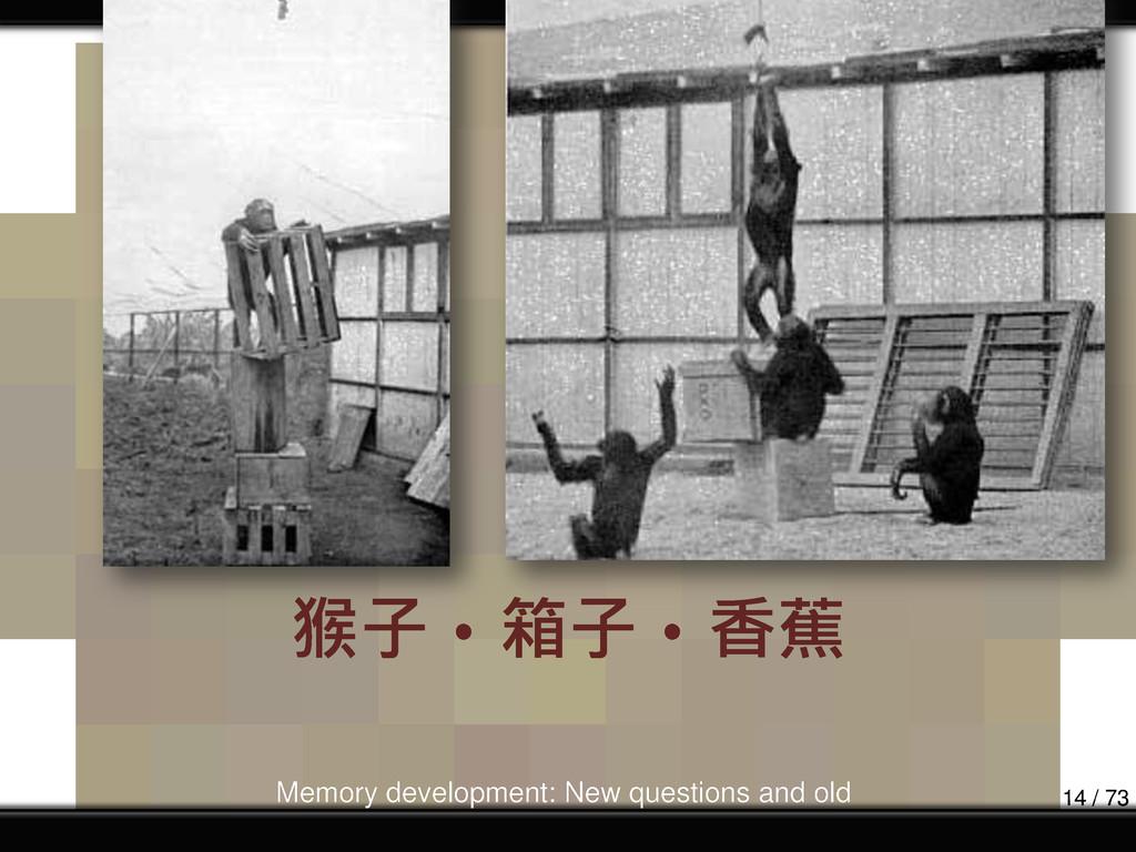 猴子‧箱子‧香蕉 Memory development: New questions and ...