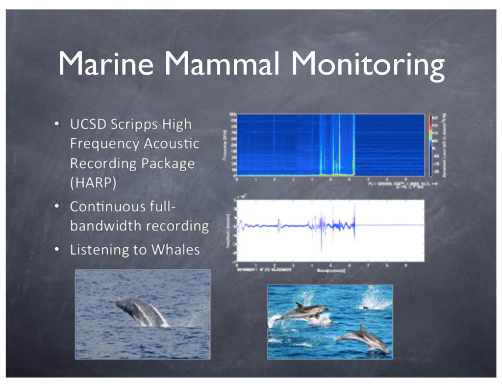 Marine Mammal Monitoring