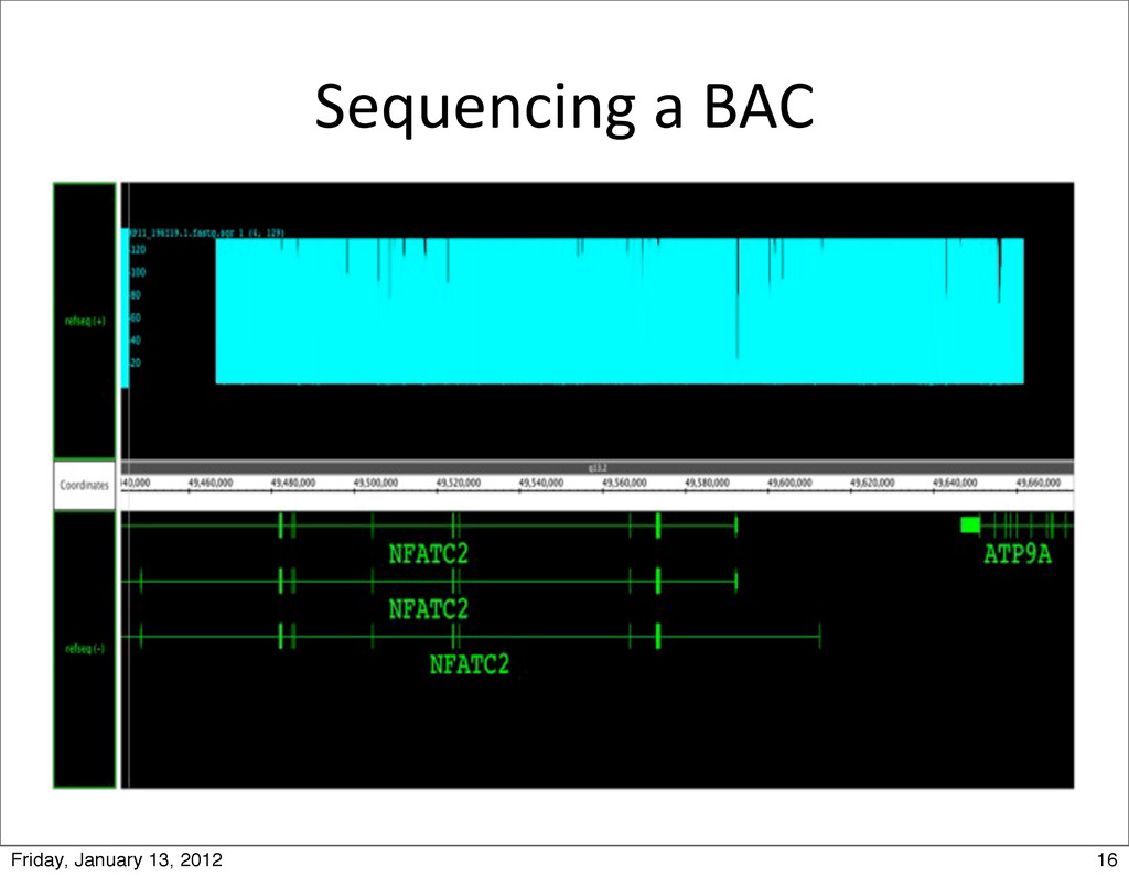 Sequencing a BAC 16 Friday, January 13, 2...