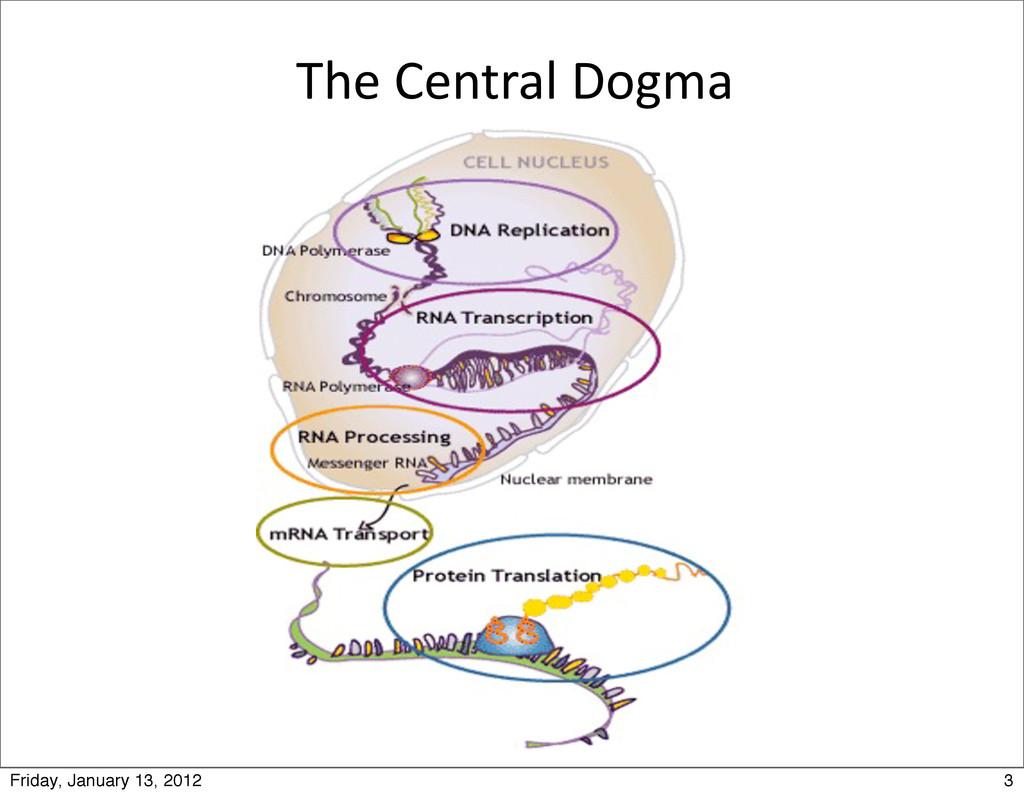 The Central Dogma 3 Friday, January 13, 2...