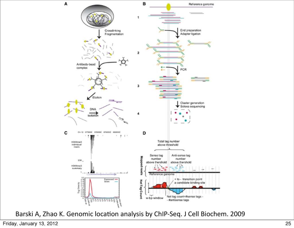 Barski A, Zhao K. Genomic loca0o...