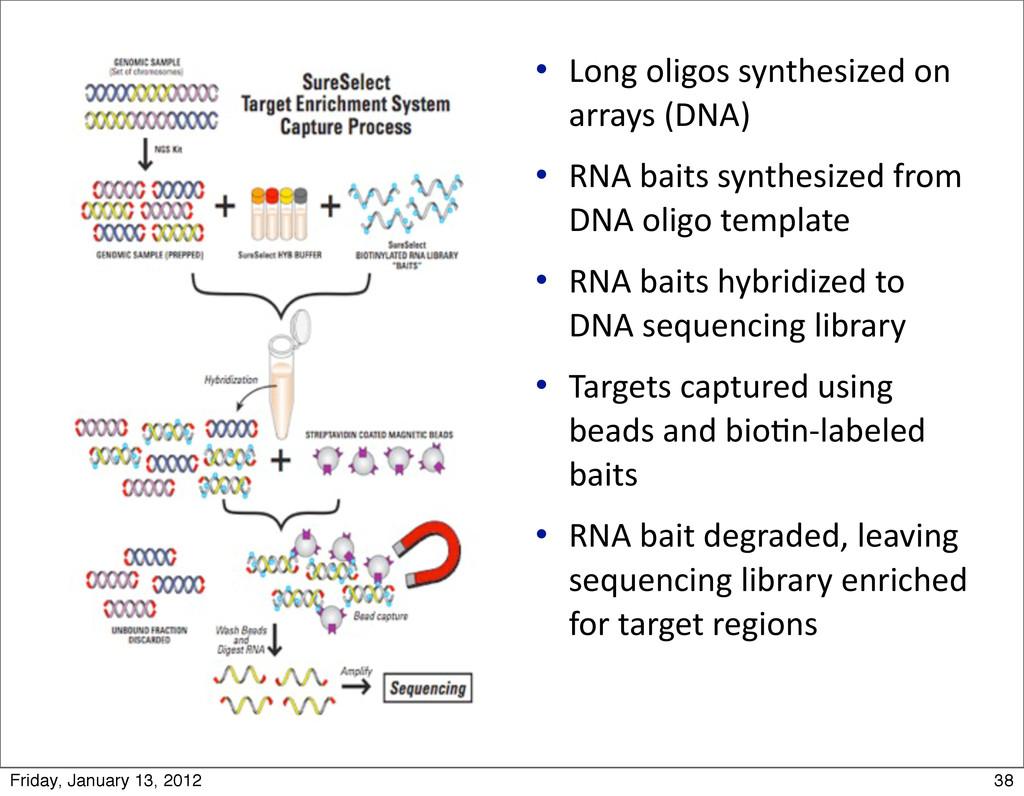  Long oligos synthesized on  array...