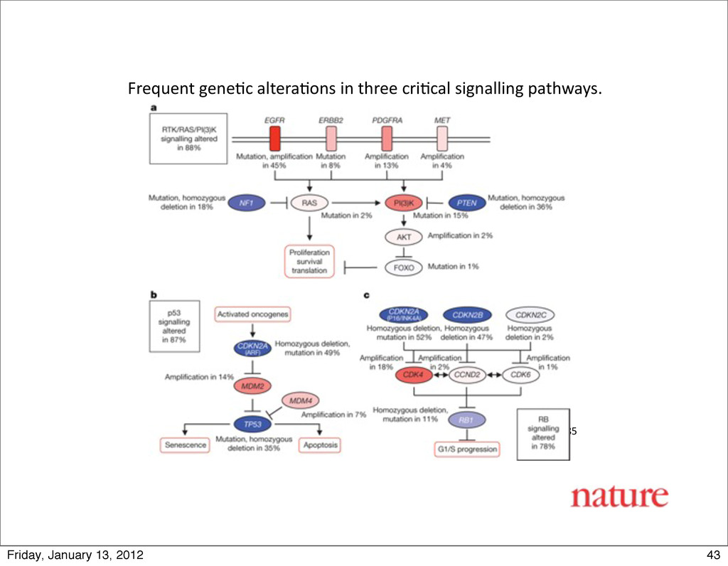 The Cancer Genome Atlas Research ...
