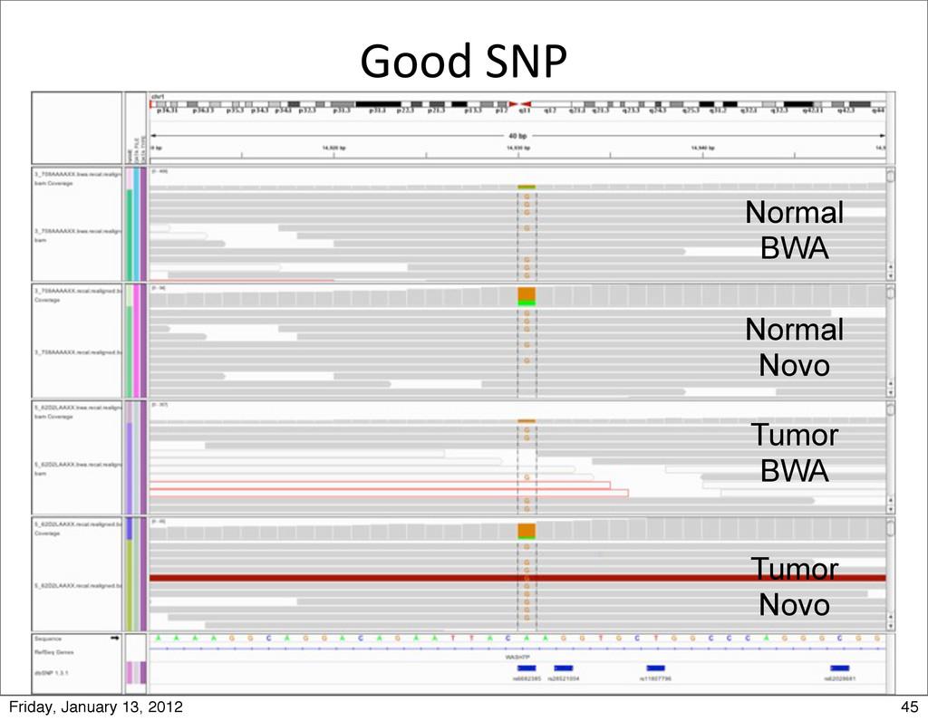 Good SNP Tumor Novo Tumor BWA Normal BWA Nor...