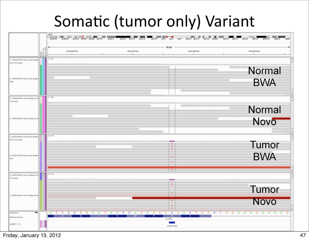 Soma0c (tumor only) Variant Tumor Novo...