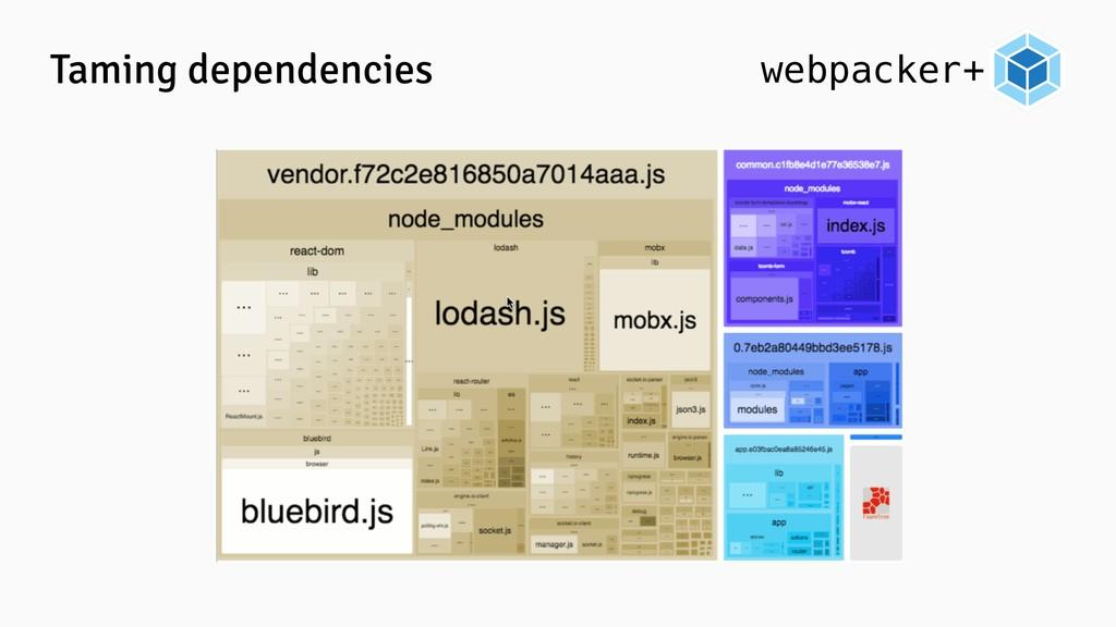 webpacker+ Taming dependencies