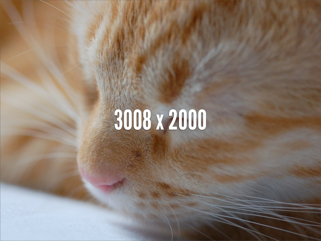 3008 x 2000