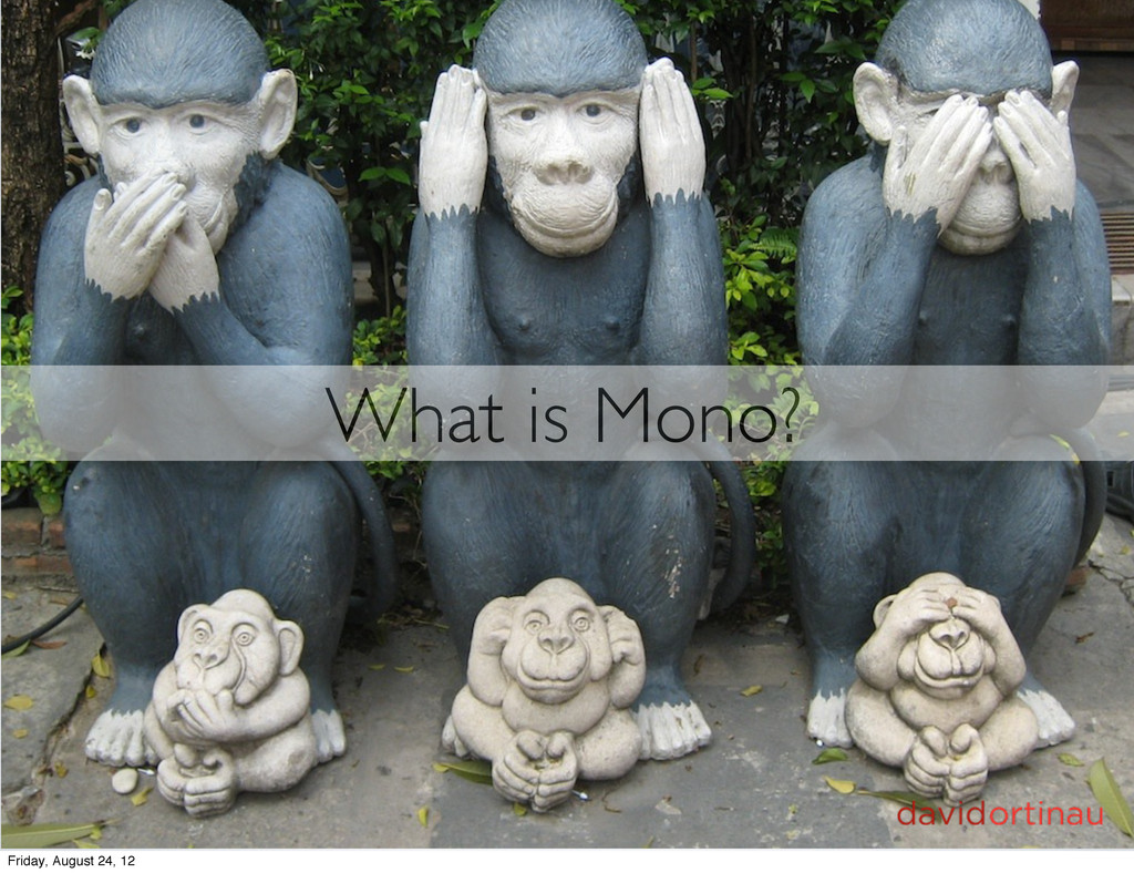 What is Mono? Friday, August 24, 12