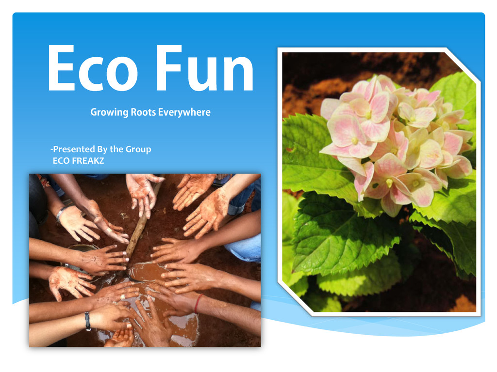 Eco Fun Growing Roots Everywhere -Presented By ...