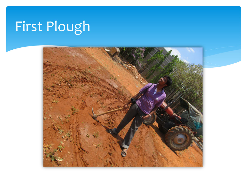 First Plough