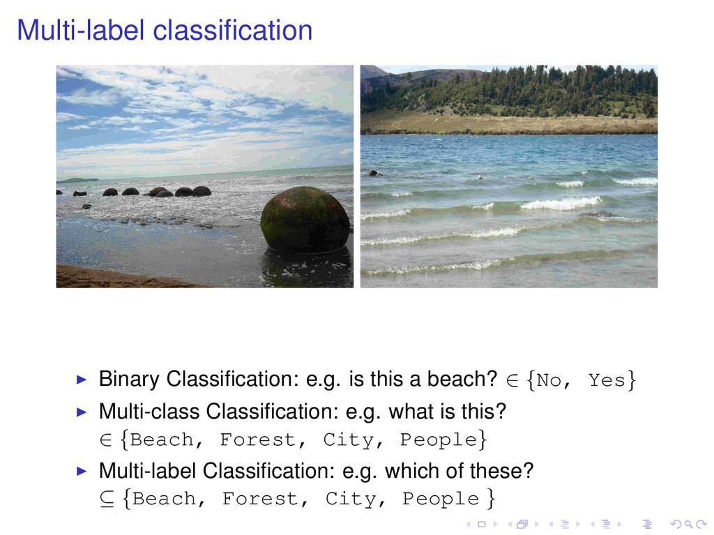 Multi-label classification Binary Classification:...