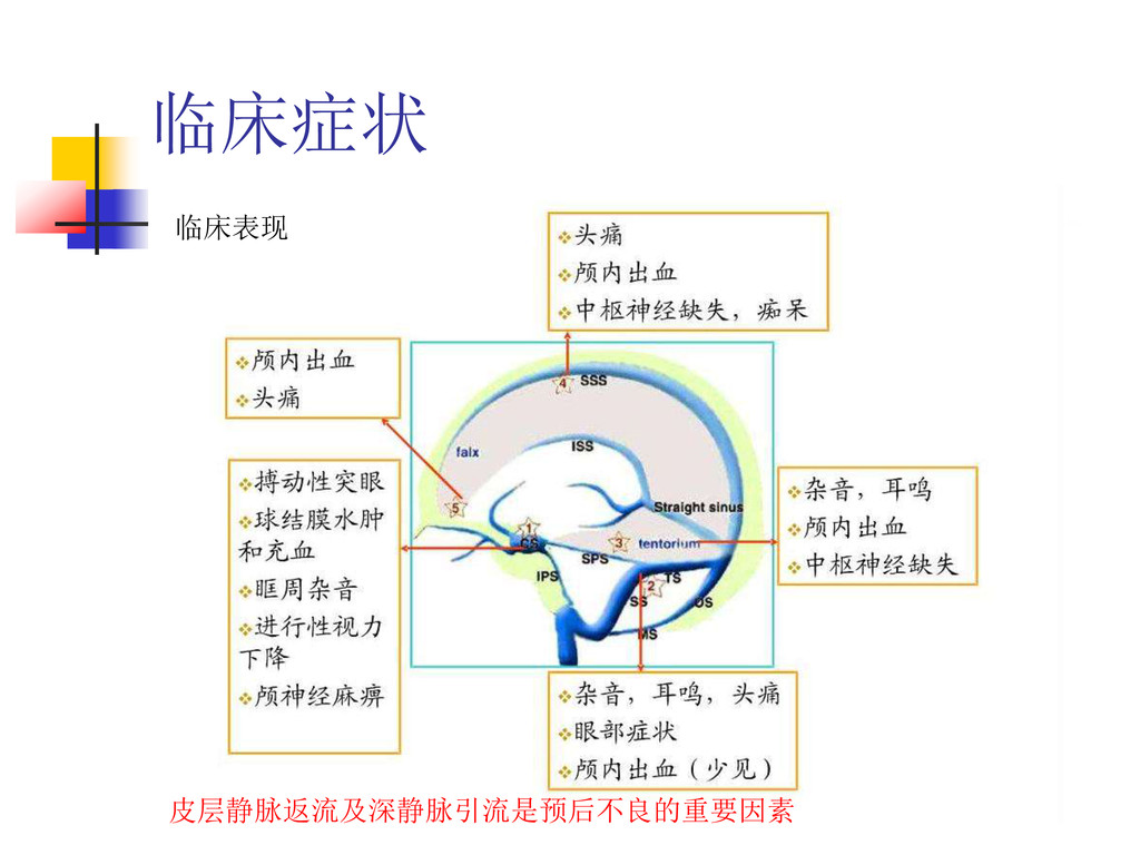 临床症状 临床表现 皮层静脉返流及深静脉引流是预后不良的重要因素