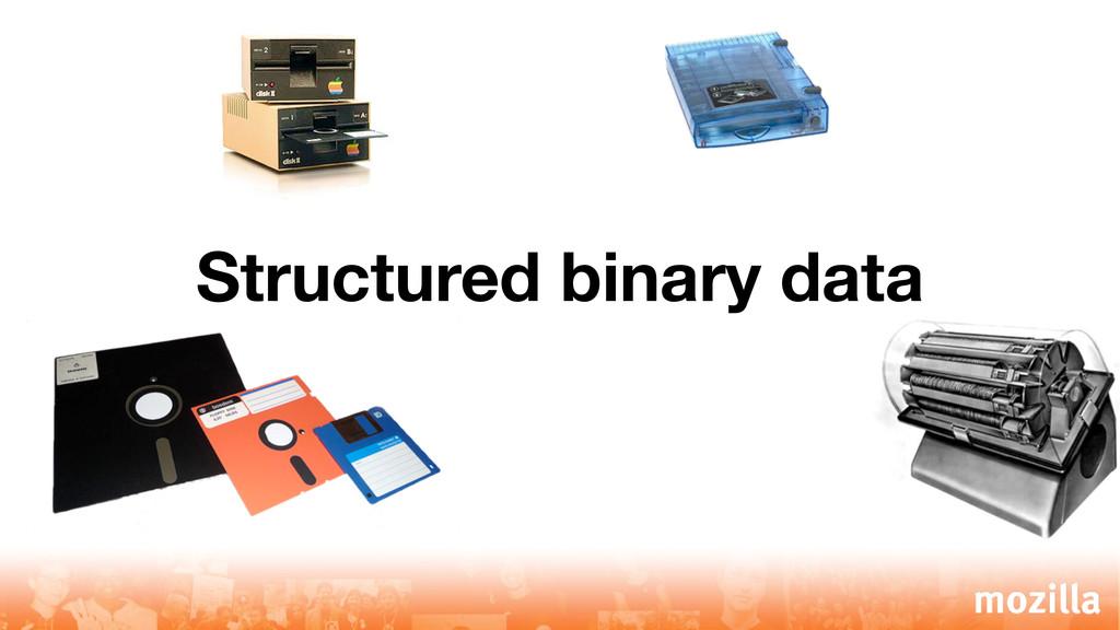 Structured binary data
