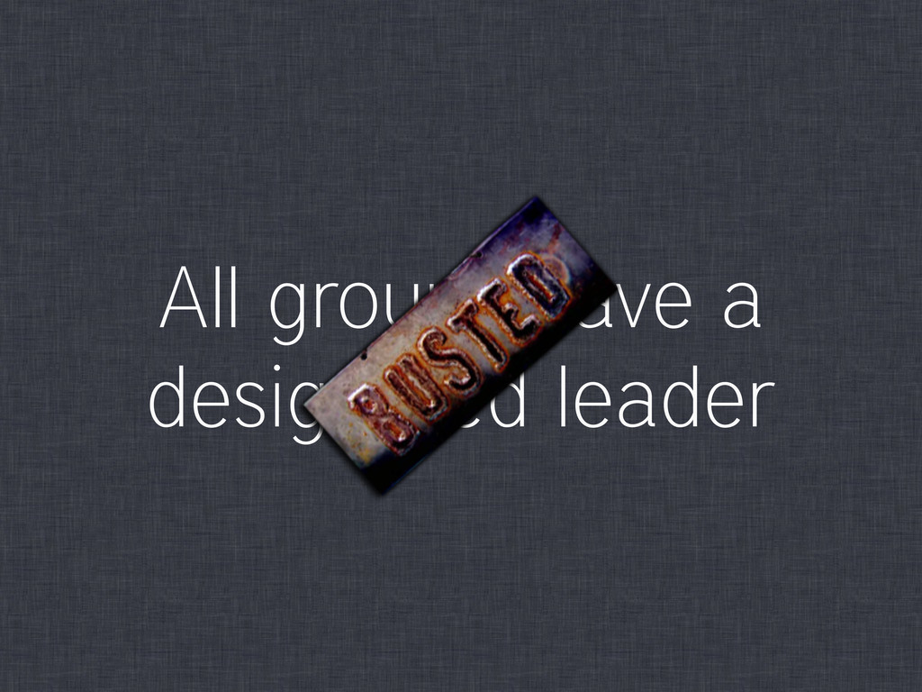 All groups have a designated leader