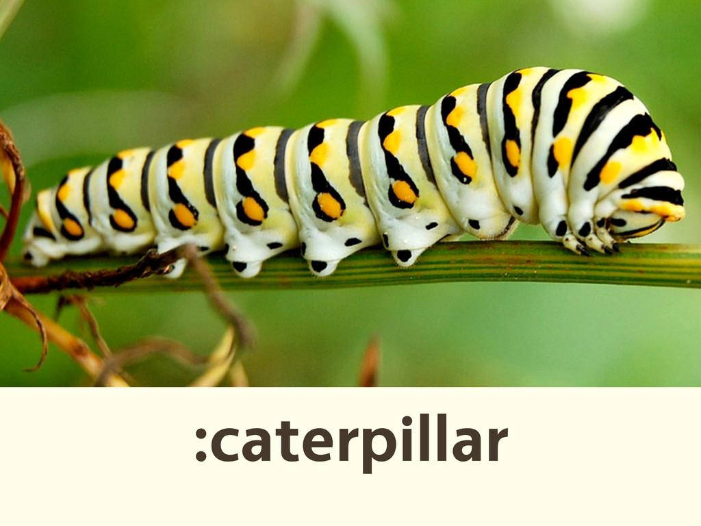 :caterpillar