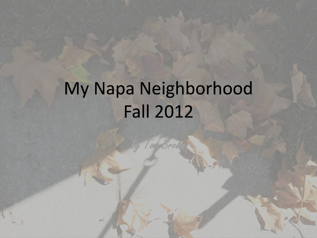 My Napa Neighborhood Fall 2012 by Tom Brown