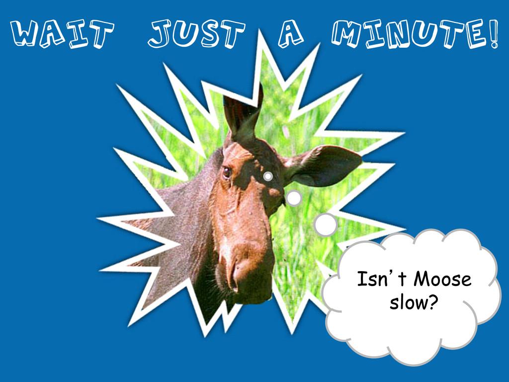Wait Just a Minute!  Isn't Moose slow?
