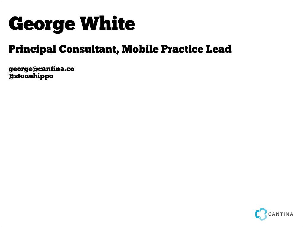 Principal Consultant, Mobile Practice Lead geor...
