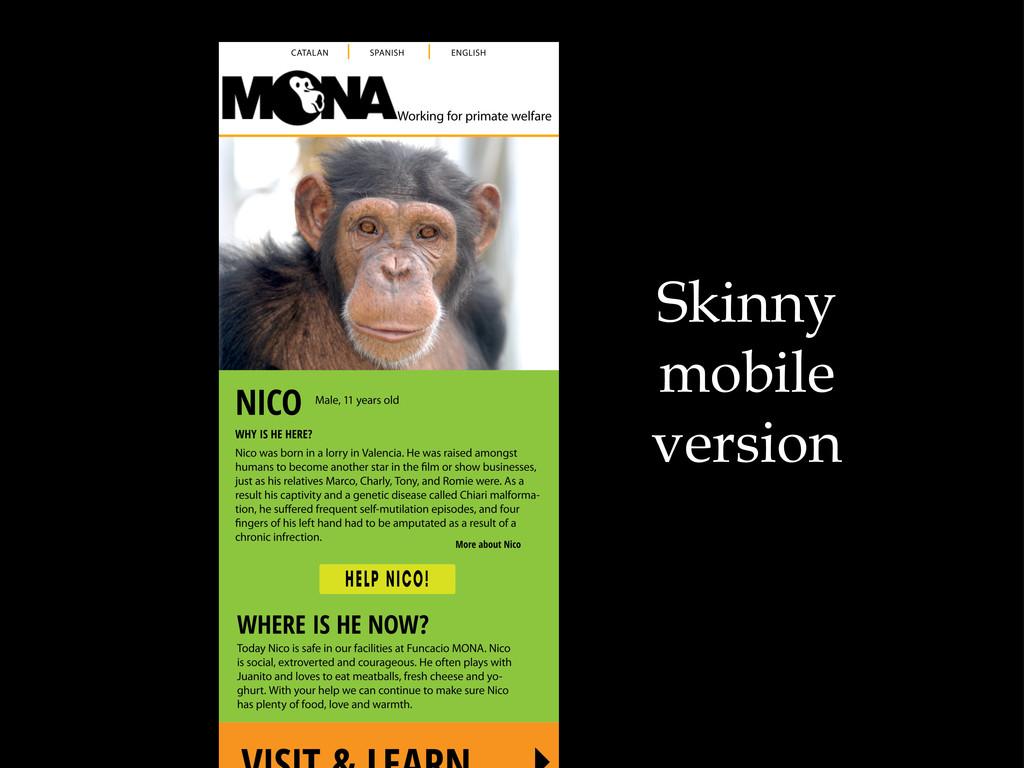 Skinny mobile version