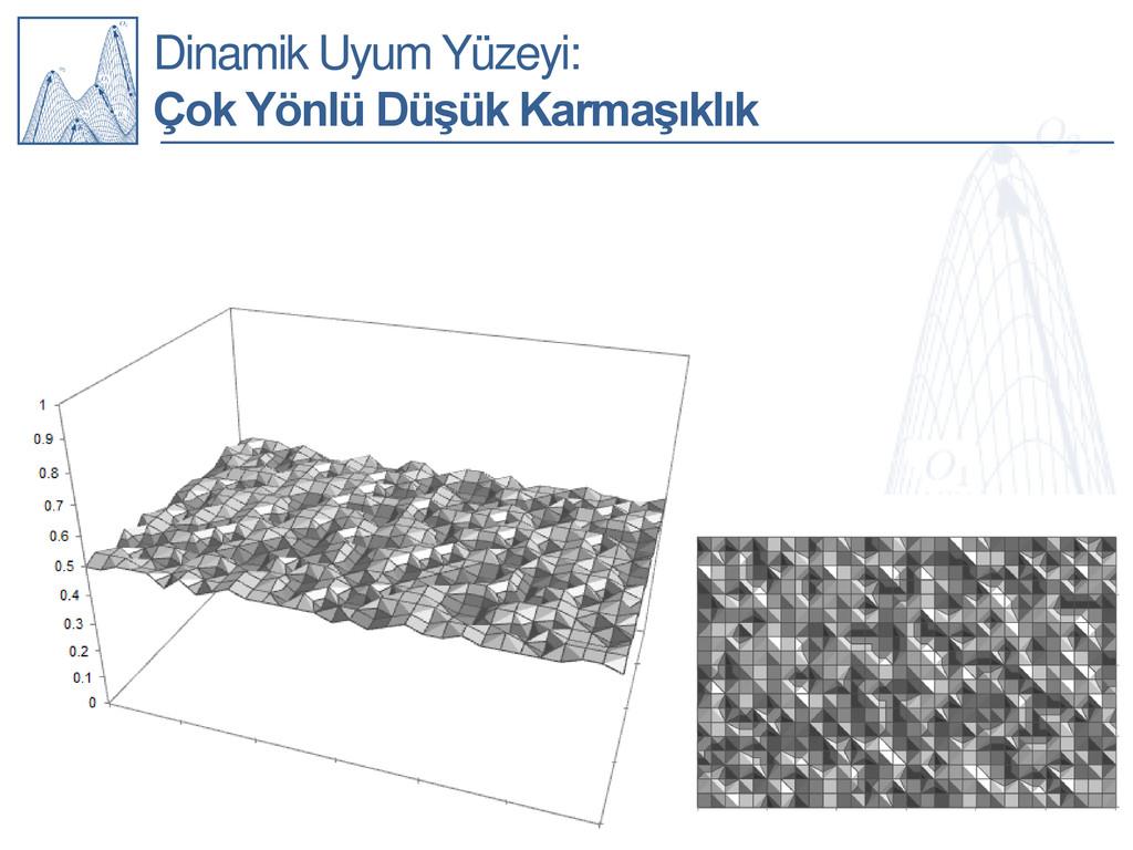 Dinamik Uyum Yüzeyi: Çok Yönlü Düşük Karmaşıklık