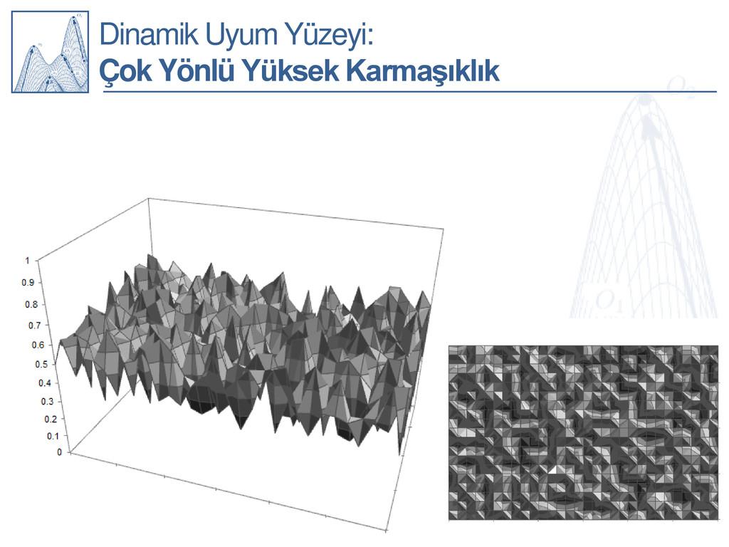 Dinamik Uyum Yüzeyi: Çok Yönlü Yüksek Karmaşıkl...