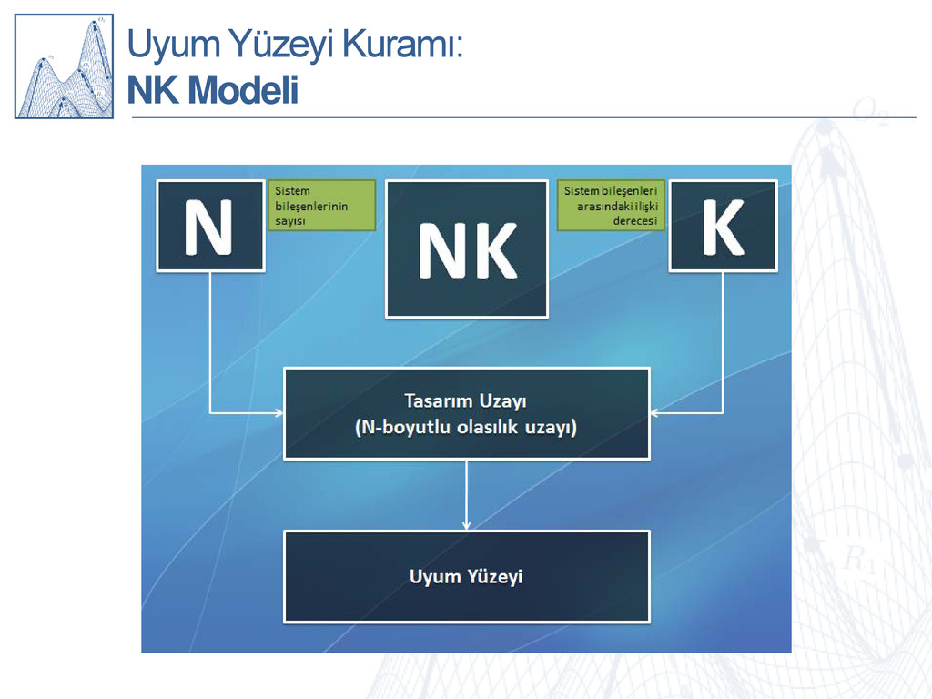 Uyum Yüzeyi Kuramı: NK Modeli