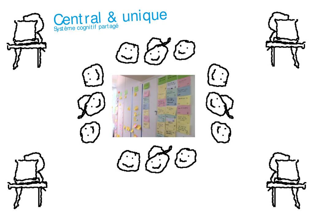 Central & unique Système cognitif partagé