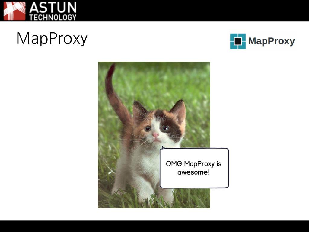 MapProxy