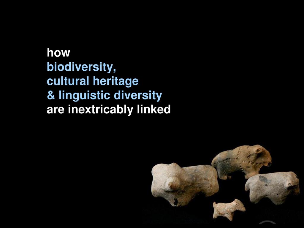 how biodiversity, cultural heritage & linguisti...