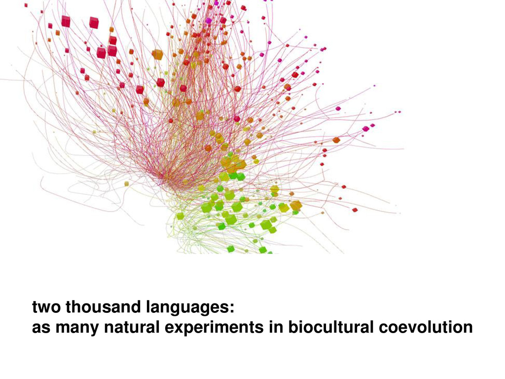 two thousand languages: as many natural experim...