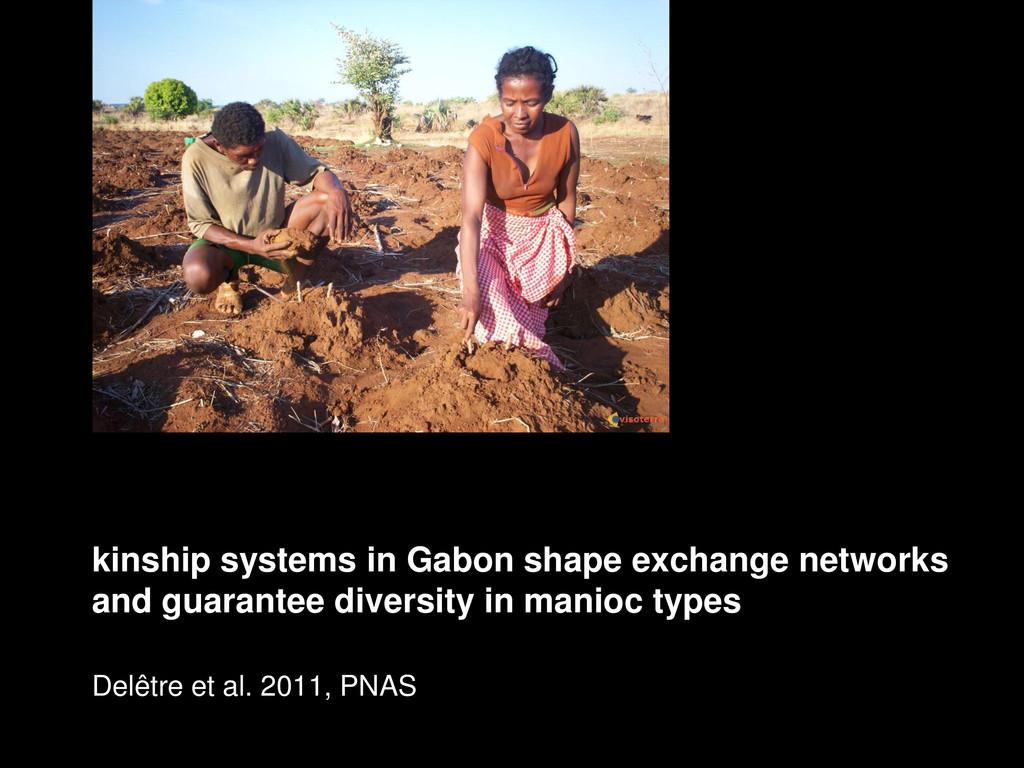 kinship systems in Gabon shape exchange network...