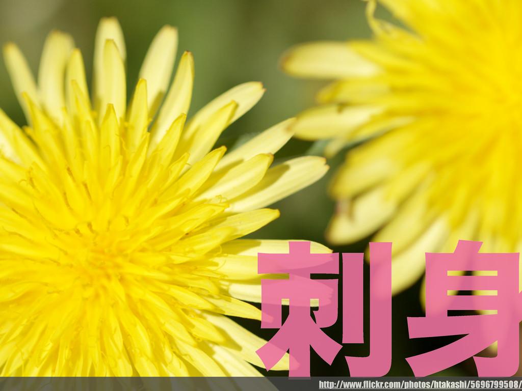  http://www.flickr.com/photos/htakashi/569679...