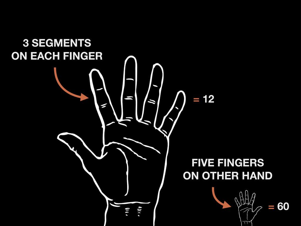 3 SEGMENTS ON EACH FINGER = 12 FIVE FINGERS ON ...