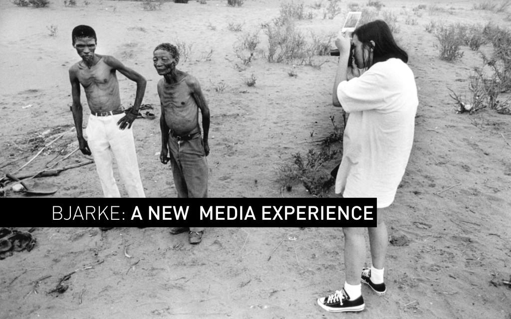 BJARKE: A NEW MEDIA EXPERIENCE