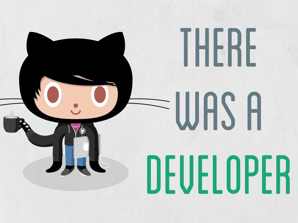there was a developer developer