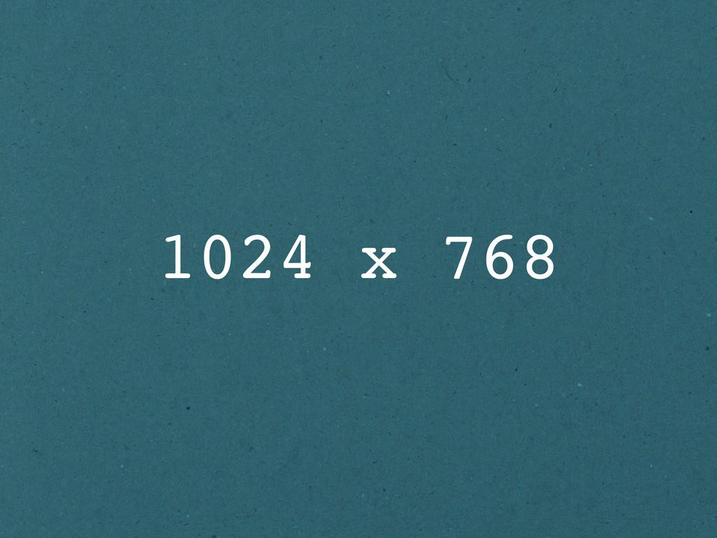 1024 x 768