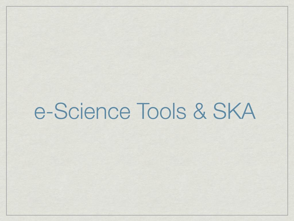 e-Science Tools & SKA