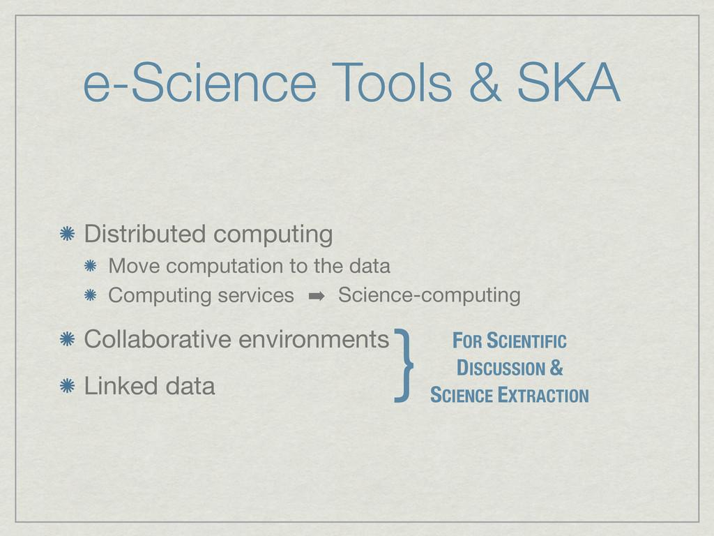 e-Science Tools & SKA Distributed computing Mov...