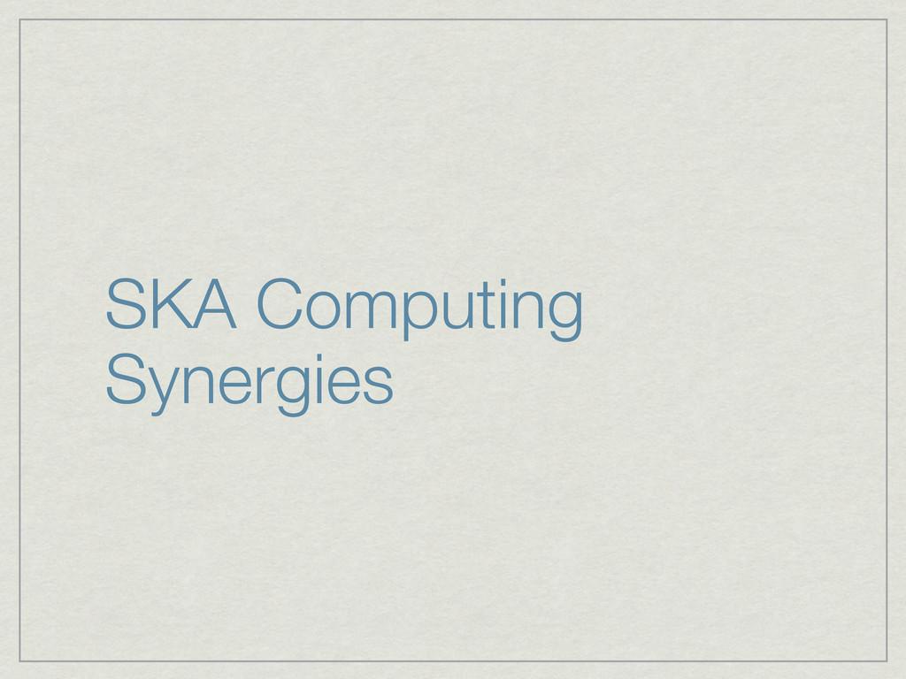 SKA Computing Synergies