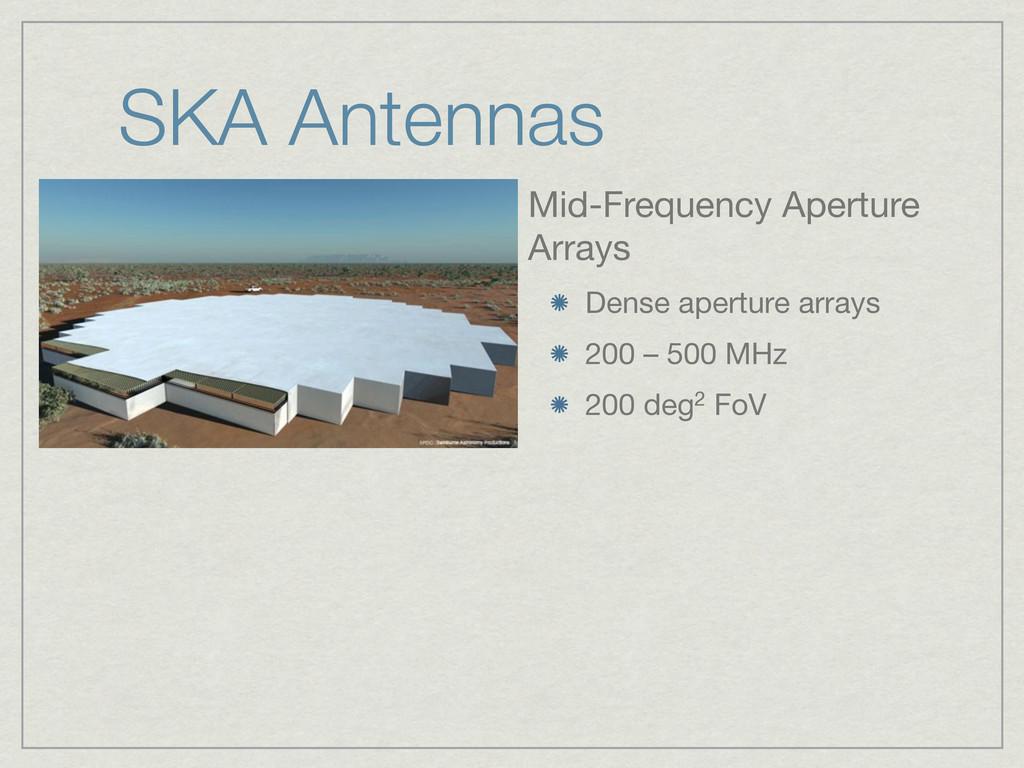 SKA Antennas Mid-Frequency Aperture Arrays Dens...