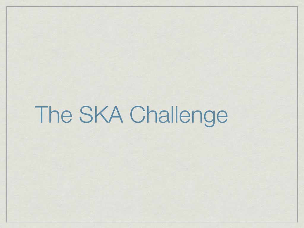 The SKA Challenge