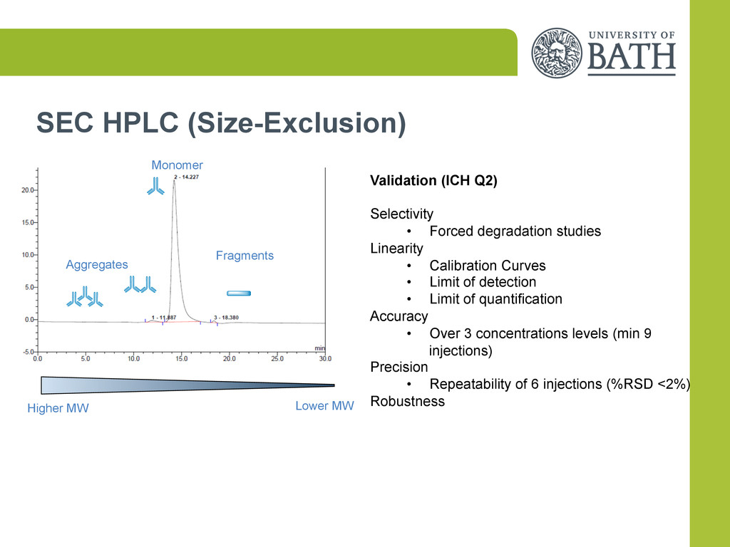 SEC HPLC (Size-Exclusion) Aggregates Fragments ...