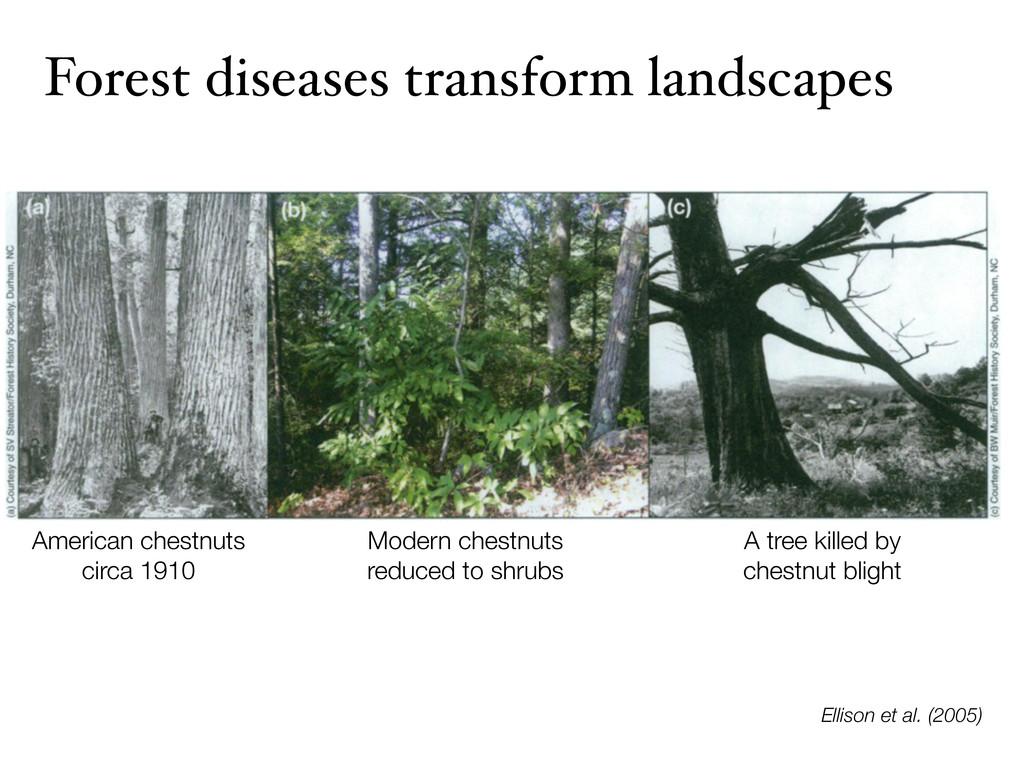 Forest diseases transform landscapes Ellison et...