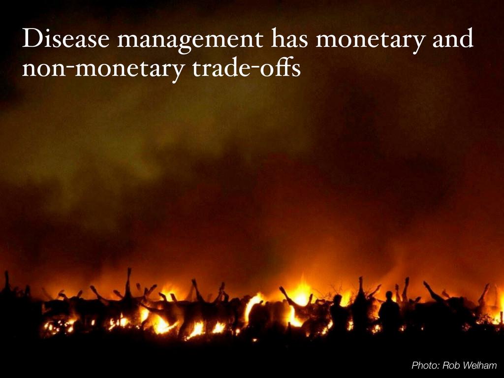 Disease management has monetary and non-monetar...