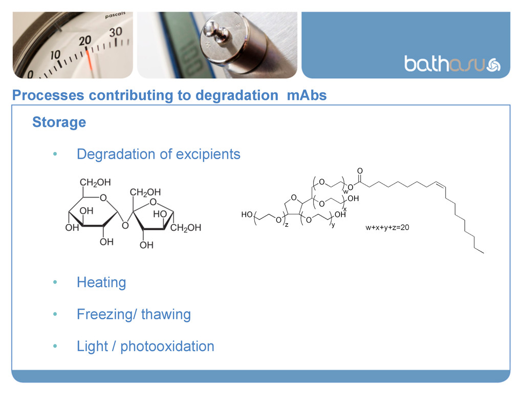 Processes contributing to degradation mAbs Stor...