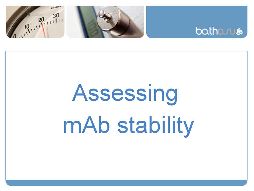 Assessing mAb stability